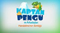 Kaptan Pengu ve Arkadaşları: Mandalina'nın Günlüğü fragmanı