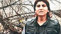 Elebaşı Kandil'de vuruldu: MİT ve TSK'nın ortak operasyonu sonucu öldürüldü