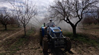 Dışarı çıkamayan yaşlı şahsın kayısı bahçesini ekipler ilaçladı
