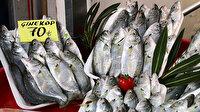 Restoranlar kapanınca balık halinde çeşit arttı, fiyat ucuzladı: Vatandaşlar balıkları yarı fiyatına alabilirler