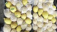 Resmi Gazete'de yayımlandı: Limon ihracatı ön izne bağlandı