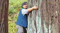 Yalnızlığa karşı öneri: Ağaçları kucaklayın