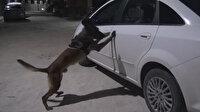 Otomobildeki 5 kilo esrarı 'Şimşek' buldu