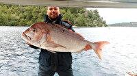 Oltayla dev trança yakalayan amatör balıkçı çılgına döndü