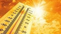 Afrika sıcakları geliyor: Sıcaklık 10 derece artacak