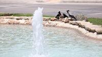 Antalya'da mayıs ayının hava sıcaklığı rekoru kırıldı