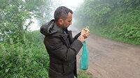 Meteor avcıları iş başında: Taşı kapan uzmanlara koşuyor