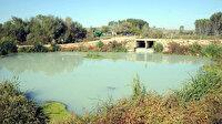 Kırklareli Valiliği: Teke Deresi'ni, belde belediyesinin arıtma tesisi kirletiyor