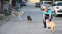 İpsala ayağa kalktı: Bir haftadır hayvanlar esrarengiz şekilde katlediliyor
