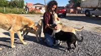 Yasemin Öğretmen maaşını sokak hayvanlarına harcıyor