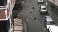 Pazar kasaları yağmurda böyle sürüklendi