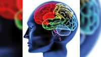 Yalan habere neden inanırız: Teknoloji artıyor beyinlerimiz köreliyor