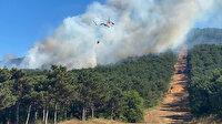 İstanbul'da Kayışdağı'nda ormanlık alanda yangın çıktı