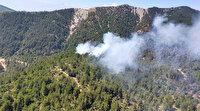Hatay'da orman yangını: Havadan ve karadan çalışma başlatıldı