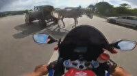 Şile'de motosiklet kazası: Emniyet şeridinde hızla ilerleyen sürücü at arabasına çarptı