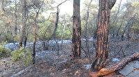 Heybeliada'da çıkan yangın sonrası soğutma çalışmaları devam ediyor