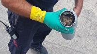 Kocaeli'de boruların içine sıkışan yavru kediler 1,5 saatte çıkarıldı