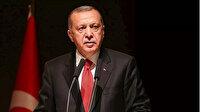 Cumhurbaşkanı Erdoğan: Ada'da kalıcı çözüm ancak Kıbrıs Türkü'nün eşit statüsünün kabulüyle mümkün