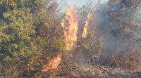 Tekirdağ'daki yangın ormanlık alana sıçradı: Ekipler havadan ve karadan müdahale ediliyor