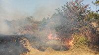 Tekirdağ'daki yangın ormana sıçradı
