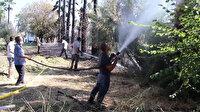 Muğla'da bir otelde çıkan yangına müdahale eden herkes yandı: 15 yaralı