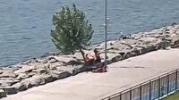 İBB, Florya sahilindeki ağaçları kesti