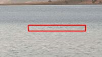 Van Gölü'nde gördükleri cisim hem korkuttu hem heyecanlandırdı