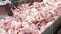 Çin, Brezilya'dan gönderilen tavukların kanatlarında koronavirüs tespit etti