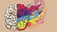 Beyin coğrafyasını anlamak