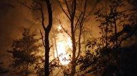 Tokat'ta orman yangını çıktı: 10 hektarlık alan küle döndü