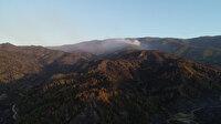 Hatay'daki orman yangını beşinci gününde: Müdahale sürüyor