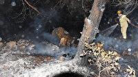 Araçtan ormana sıçradı 5 hektar alanı kül etti