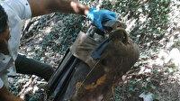 Vahşi cinayetin sırrı 7 yıl sonra çözüldü: Hamile kadını öldürüp valizle ormana atanlar yakalandı