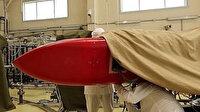 Putin'in 'tamamen yeni bir silah türü' dediği Rus Skyfall füzeleri konusunda İngiltere'den uyarı