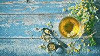 Papatya çayı faydaları nelerdir: Papatya çayı nelere iyi gelir?