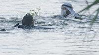 Kalk Gidelim setinde ilginç olay: Turist boğulma sahnesini gerçek sanıp nehre atladı