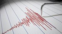 Muş 4,2'lik depremle sarsıldı