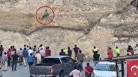 Şanlıurfa'da Türk bayrağını indirmeye çalışan şahıs linç edildi: Polis havaya ateş açarak kurtardı