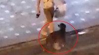 Alkollü Rus turist, önce ATM'yi sonra sokak köpeğini tekmeledi