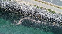Yenikapı Sahili'nde kirlilik su altı drone kamerasına yansıdı: Balıkların onlarca çöp içerisindeki yaşama tutunma mücadelesi de şaşırttı