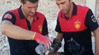 Çöken toprak ve kaya yığınının altında kalan yavru köpeği itfaiye ekipleri kurtardı