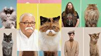 Bu benzerliklere çok şaşıracaksınız: Kediler ve onlara benzeyen sahipleri
