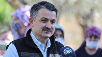 Tarım ve Orman Bakanı Pakdemirli: Kütlü pamuk primi arttırıldı