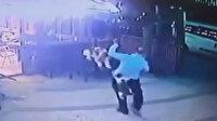 Köpeğini gezdirirken kedi saldırısına uğrayan adamın korku dolu anları kamerada