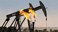 Petrol ithalatında büyük düşüş
