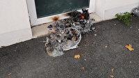 Fransa'da camiye kundaklama girişimi: Yangın büyümeden söndü