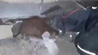Enkaz altında kalan kedi canlı olarak böyle kurtarıldı