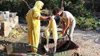 Doğal banyo kesesi: Hatay'da nehir kıyısında yetiştiriyorlar getirisi iyi