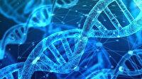 Türk bilim insanlarından kaçak alkolden ölümleri bitirecek buluş: Damladaki DNA'dan iz sürülecek