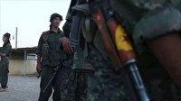 YPG/PKK yüzlerce DEAŞ'lı teröristi serbest bıraktı